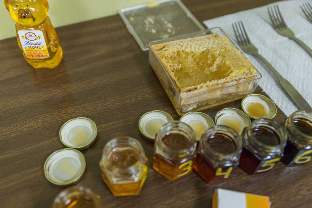 Honey samples at the Duluth Folk School
