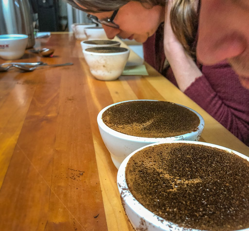 Photo of Coffee Cupping