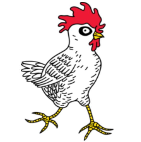 Homegrown Chicken at the Duluth Folk School